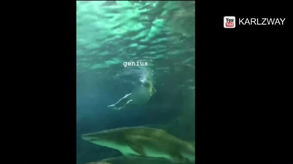 Naked man who jumped in shark tank at Ripley's Aquarium