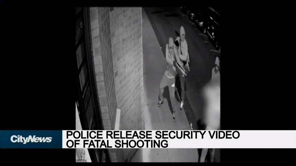 Security Gard Video