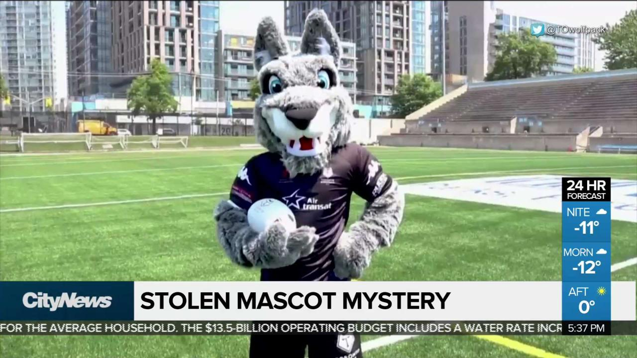 The mystery of the missing Toronto Wolfpack mascot