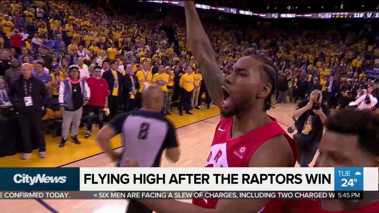Emotional rollercoaster comes to an end for Raptors fans