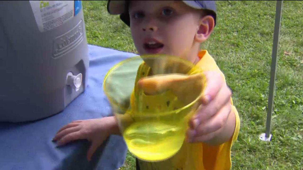 4-year-old raises money for SickKids with lemonade stand