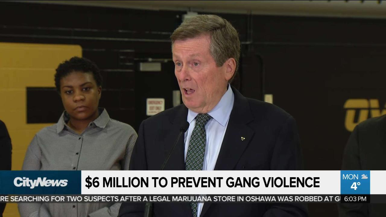 Tory pledges $6M to combat gun and gang violence