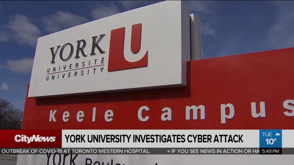 York U suffers serious cyber breach - CityNews Toronto